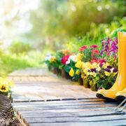 L'entretien d'un jardin fleuri