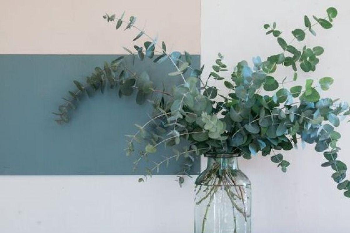 Feuille D Eucalyptus Bouquet l'eucalyptus en déco, une touche de verdure dans votre maison