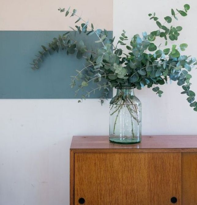 L'eucalyptus en déco, une touche de verdure dans votre maison