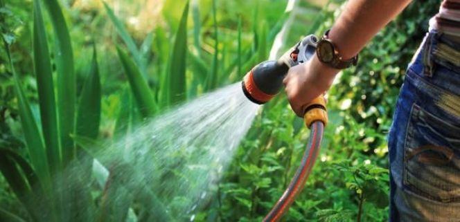 L'utilisation du soufre en jardinage