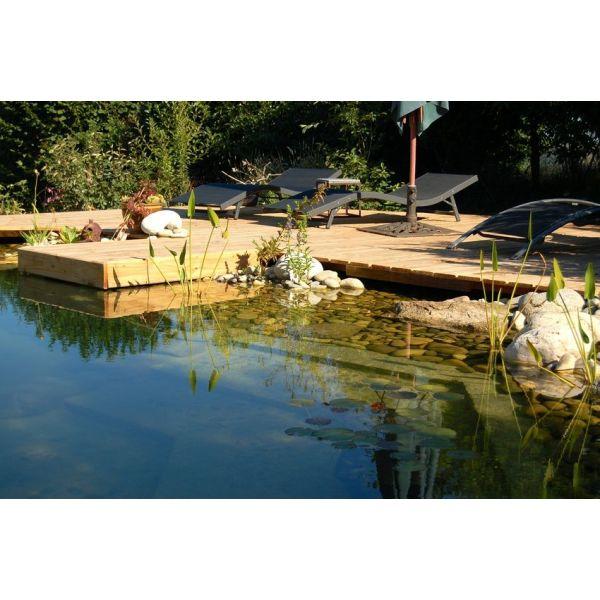 la piscine naturelle un bassin cologique dans votre jardin. Black Bedroom Furniture Sets. Home Design Ideas