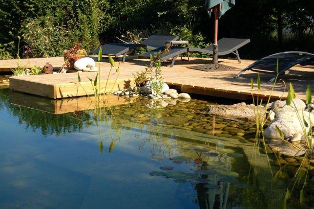 La piscine naturelle