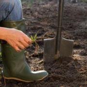 Labourer son jardin : techniques et procédés
