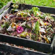 Le compost : définition et principe