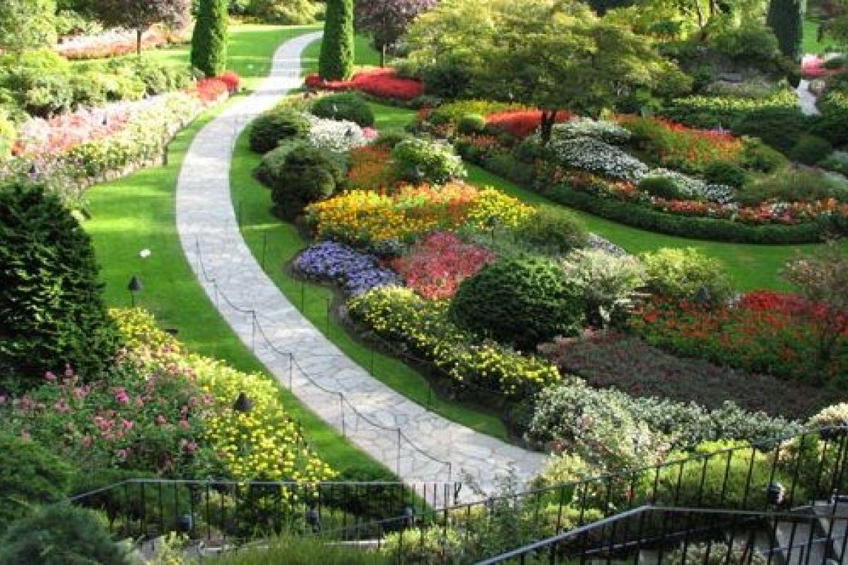Plantes Pour Jardin Contemporain le jardin de curé, savez-vous ce que c'est ?