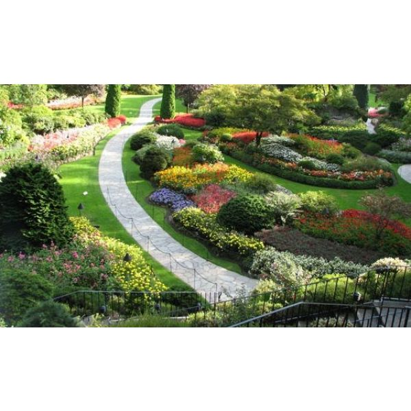 Le jardin de cur savez vous ce que c 39 est for Jardin et vous