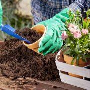 Le jardinage biologique