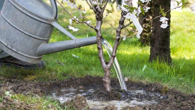 Le matériel d'arrosage de jardin