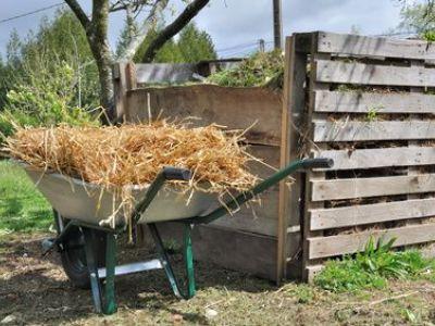 Le paillage en jardinage