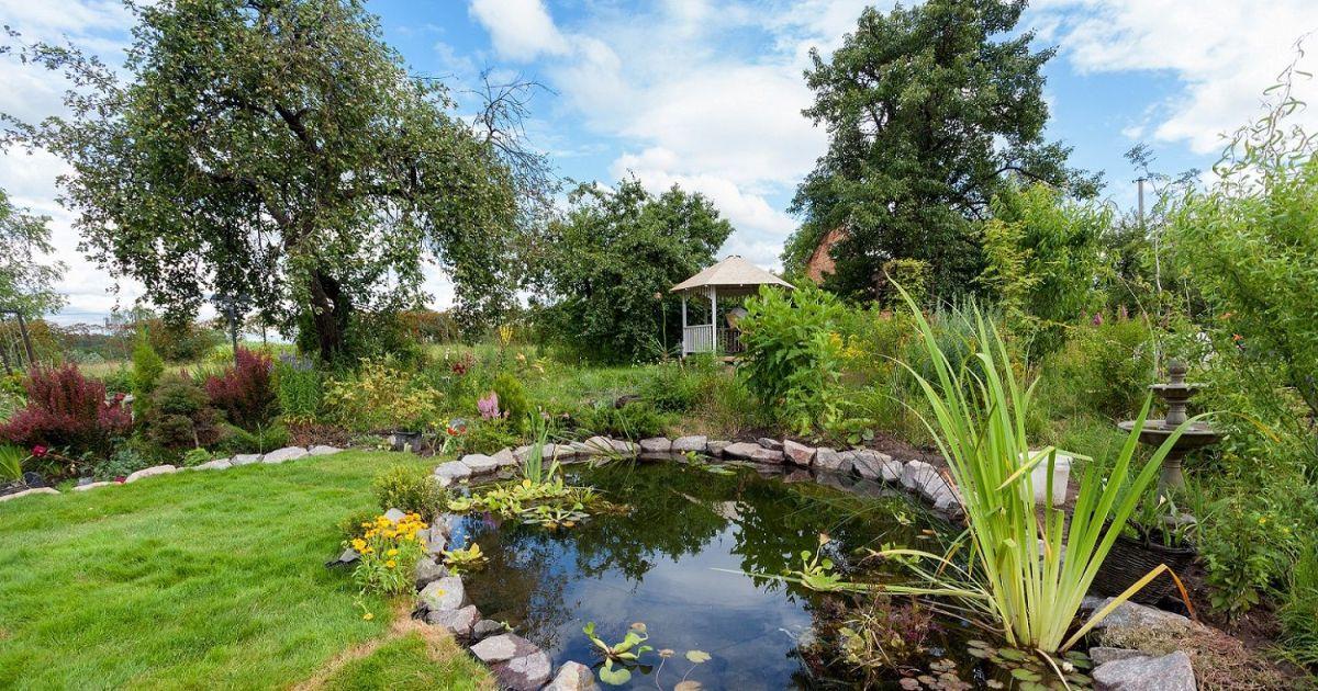Les accessoires pour bassin de jardin Accessoires pour bassin de jardin