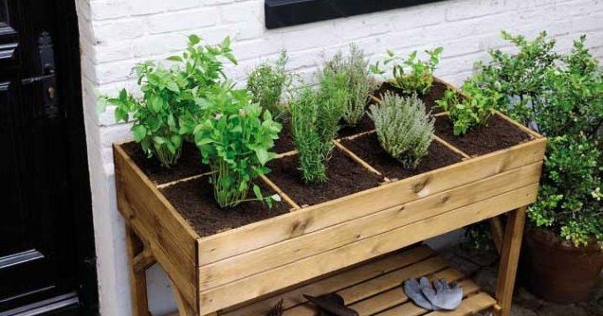 Les bacs potagers faciles et pratiques - Potager sur une terrasse ...