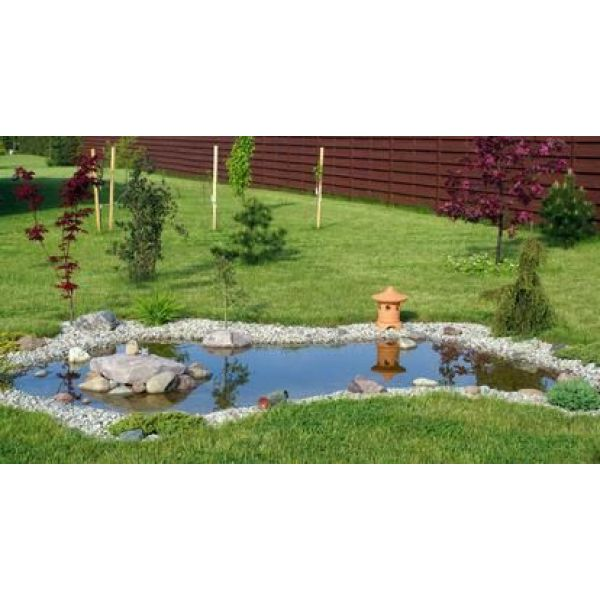 Les bassins d agr ment pour votre jardin for Amenager son jardin d agrement
