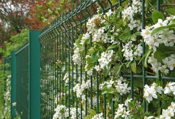 Les clôtures en grillage