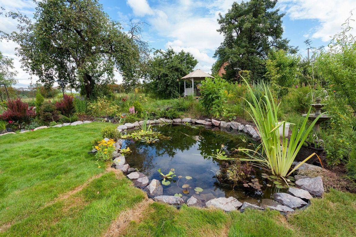 Comment Faire Un Petit Bassin Aquatique les différentes formes de bassins de jardin