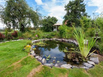 Les différentes formes de bassins de jardin