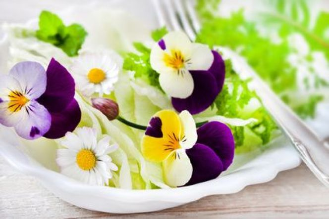 Les fleurs de jardin comestibles