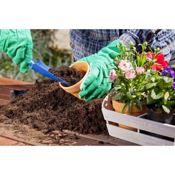 Les Jardinieres Pour Fleurir Terrasses Et Rebords De Fenetres