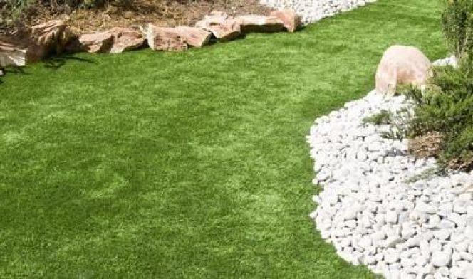 Les pelouses à entretien réduit