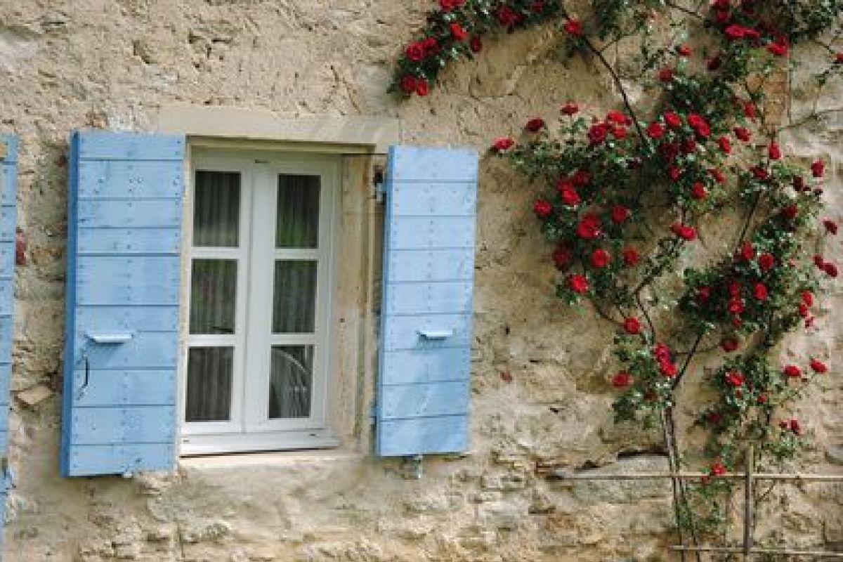 Plante Sur Les Murs les plantes grimpantes à palisser sur un mur