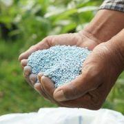 Les produits répulsifs pour jardin
