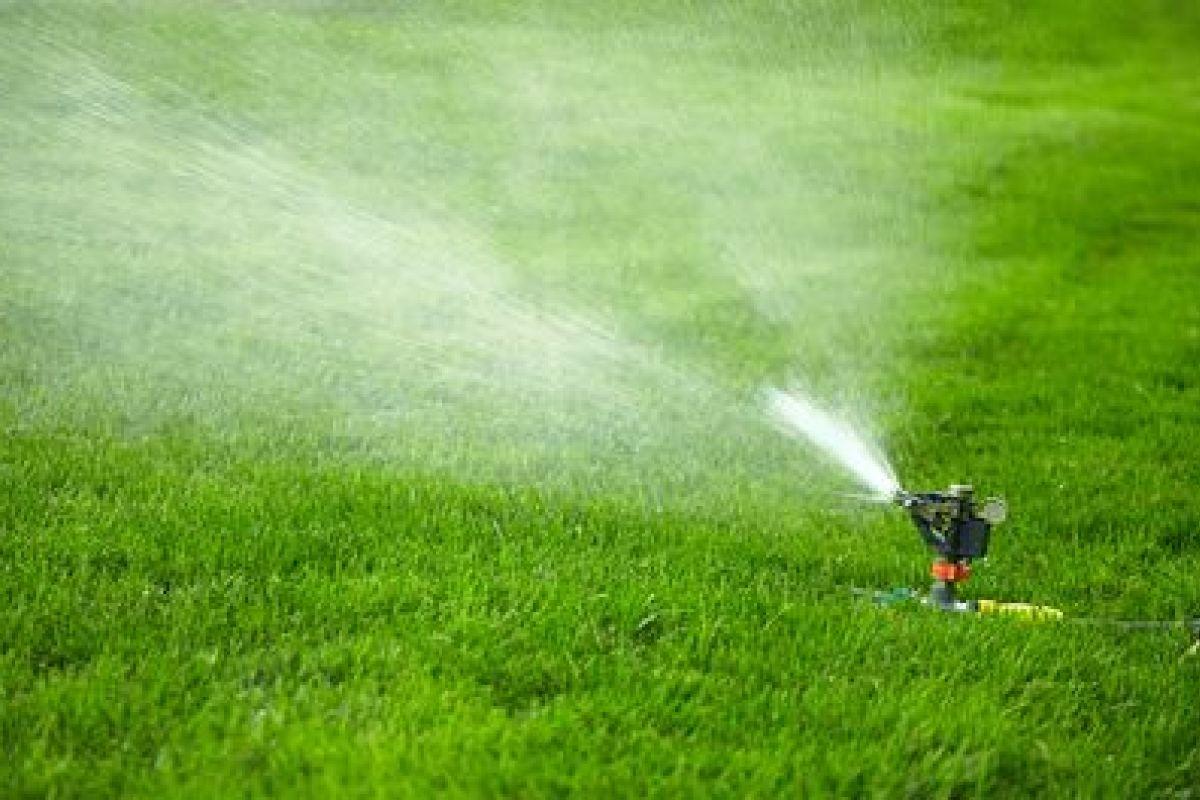 Comment Arroser Jardin Pendant Vacances les systèmes d'arrosage automatique pour votre jardin