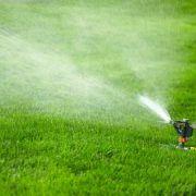 Les systèmes d'arrosage automatique pour votre jardin