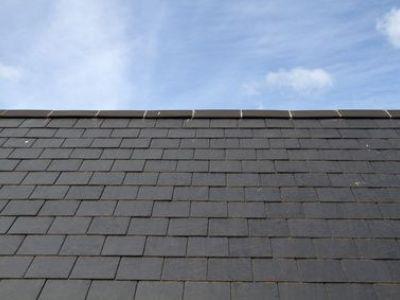Les traitements anticryptogamiques pour toiture