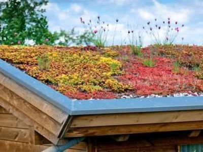 Les produits de traitement antimousses pour toiture