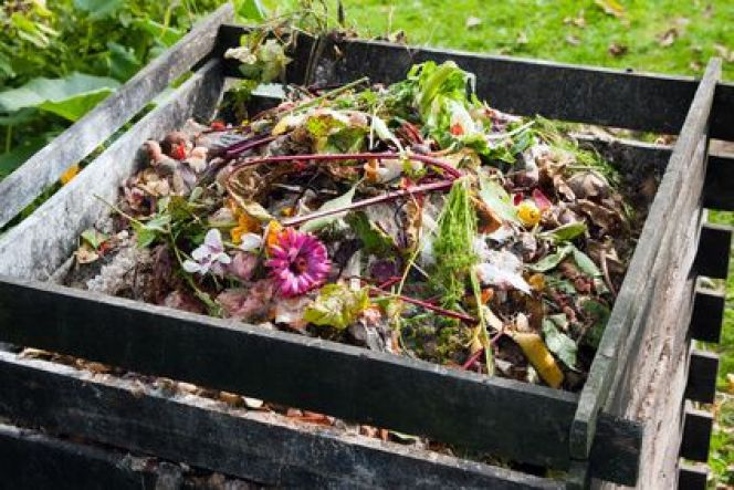 Mettre en place un compost dans son jardin