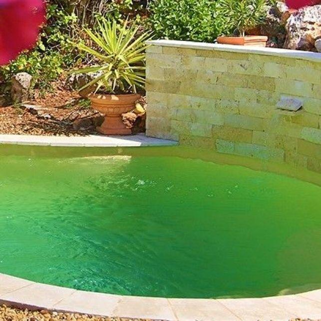Apportez du cachet à votre jardin grâce à la mini piscine de forme plus traditionnelle