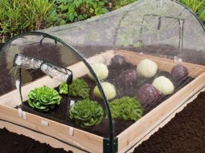Les mini serres de jardin