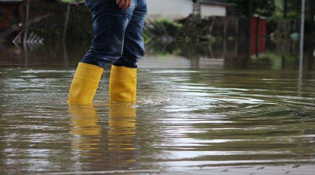 Mon jardin a été inondé par la pluie : que faire ?