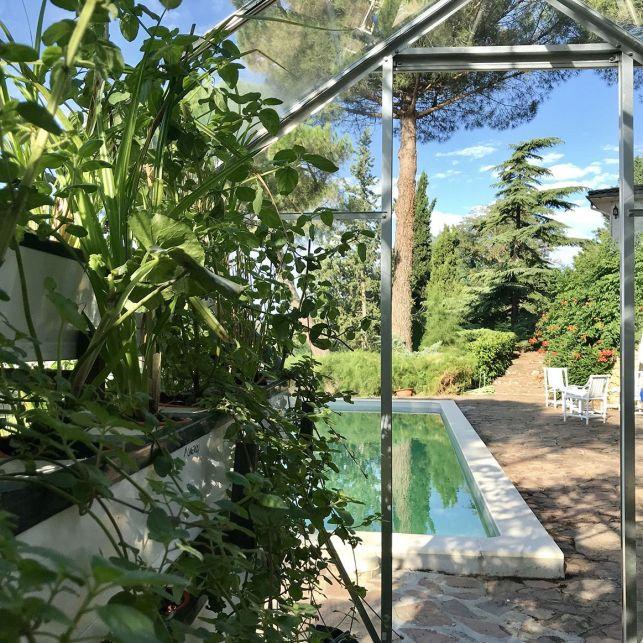 La piscine végétale et sa serre peut vous permettre de faire pousser vos plantes aromatiques.