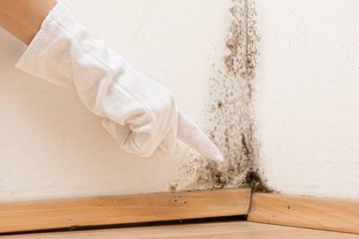 Humidité Dans Une Piece Que Faire problème d'humidité sur papier peint : que faire ?
