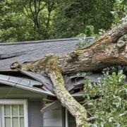 Protéger sa toiture des tempêtes