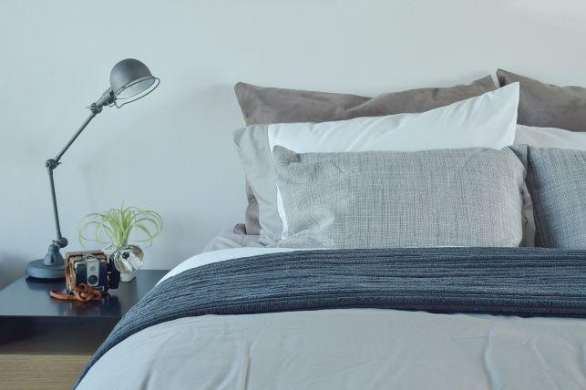 Punaises de lit : comment éradiquer ces parasites définitivement ?