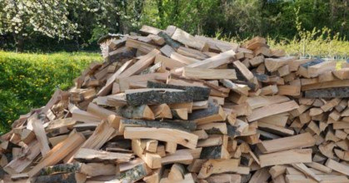 Quand couper le bois de chauffage id e int ressante pour - Coupe de bois de chauffage sur pied a vendre ...
