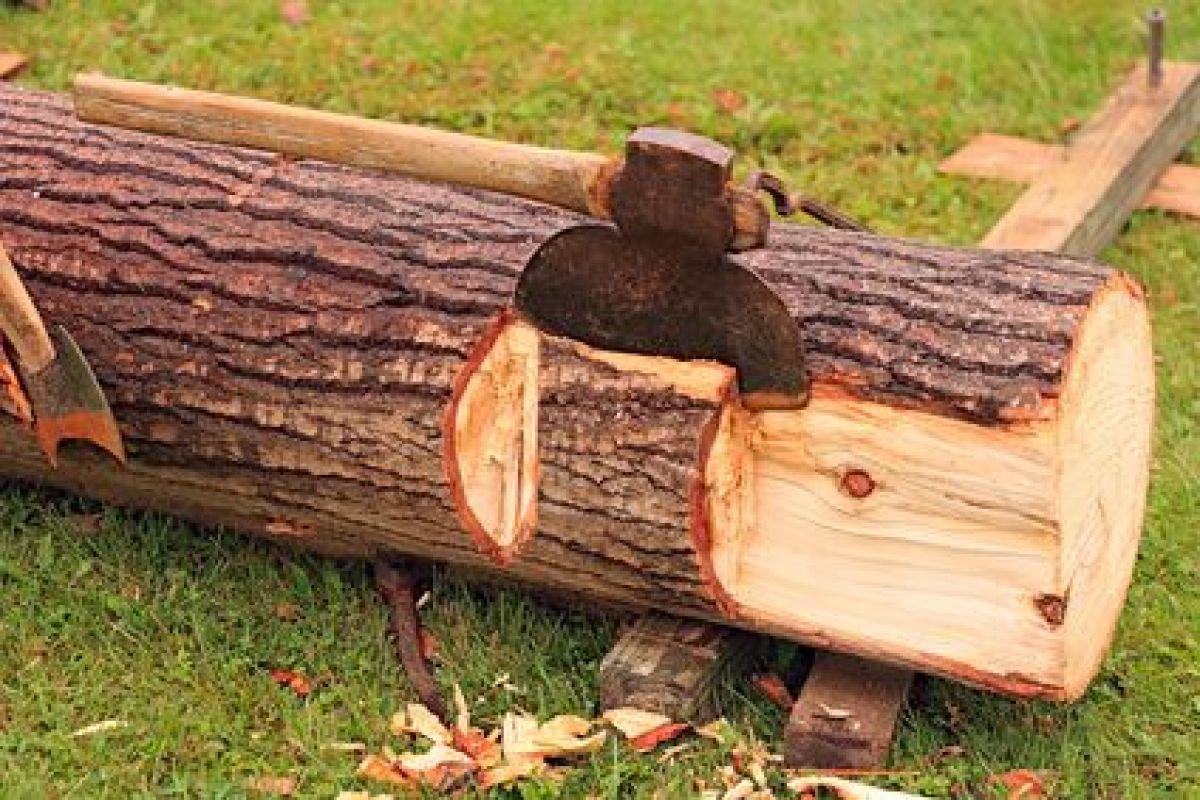Quand Acheter Son Bois De Chauffage quel bois utiliser pour un poêle à bois ?