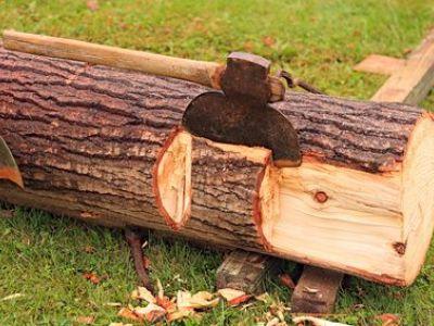 Quel bois utiliser pour un poêle à bois ?