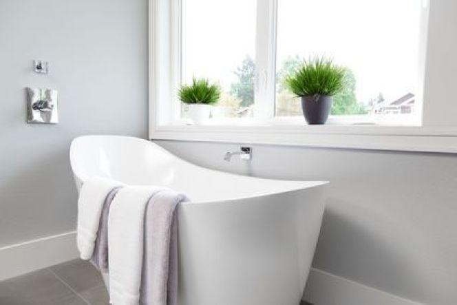 Quelles plantes choisir pour la salle de bain ?