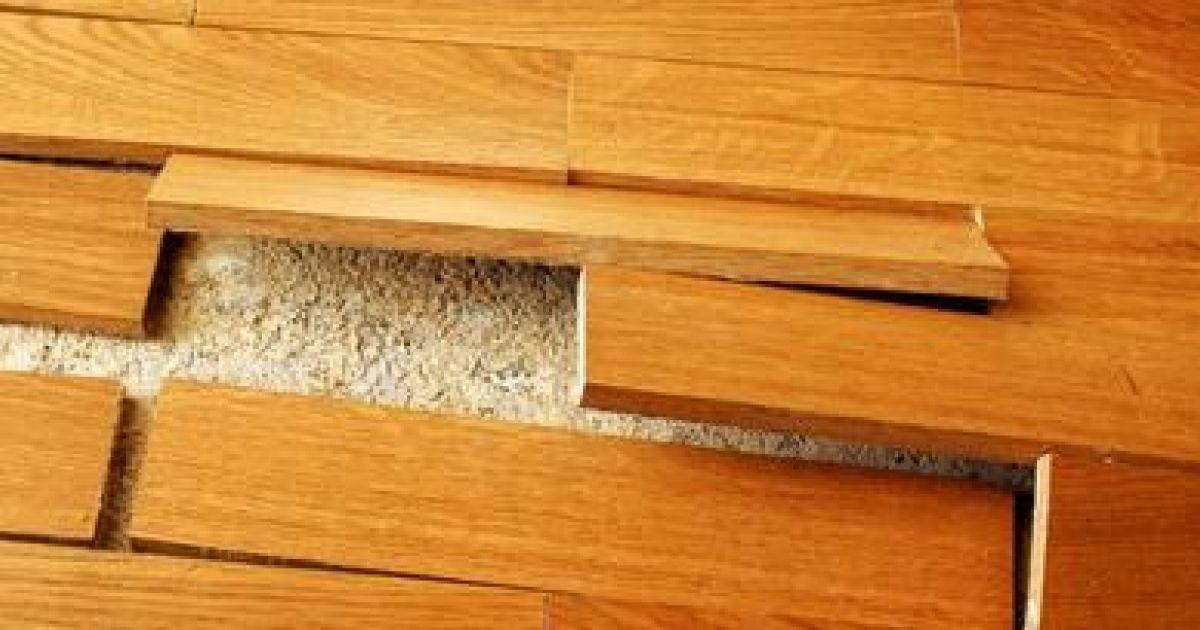 Lame de plancher exterieur 28 images remplacer une for Plancher bois terrasse exterieur