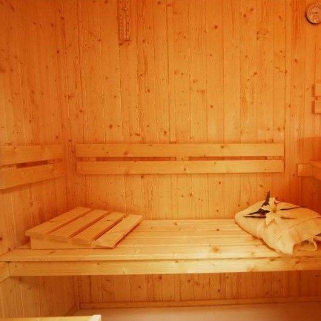 Le sauna combiné vapeur multifonction