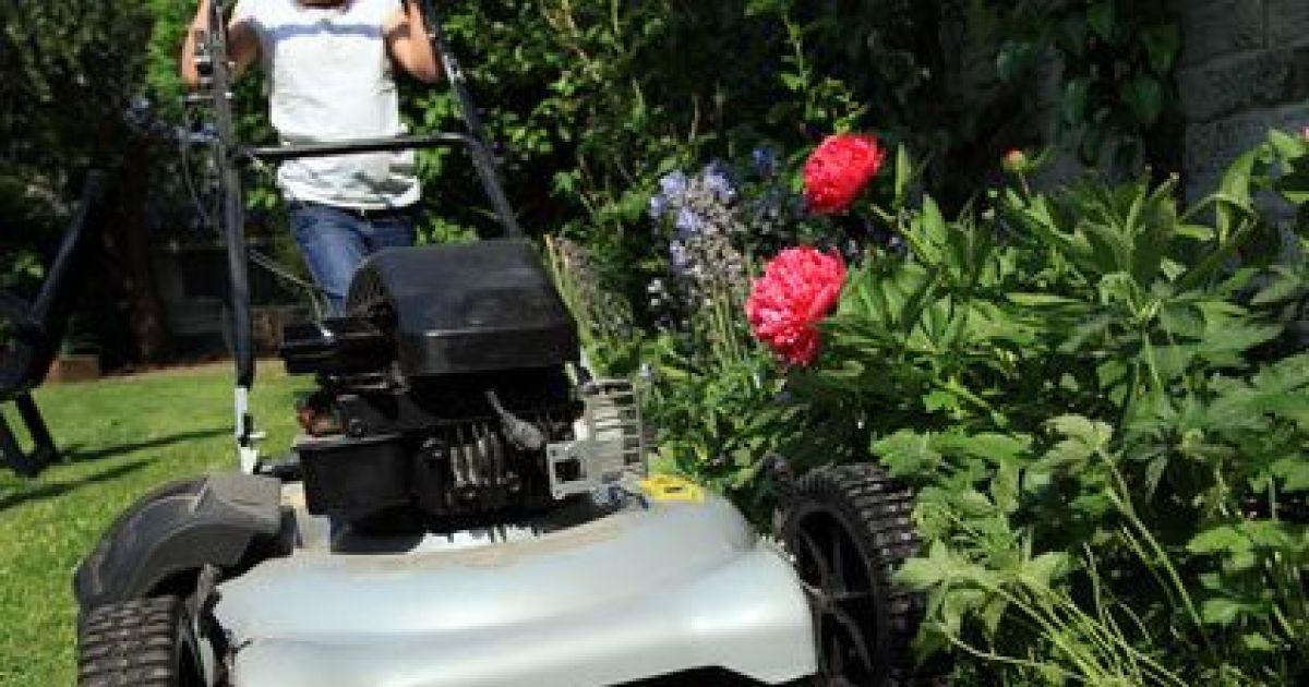 Taille et tonte des arbres et pelouses de votre jardin for Tonte jardin