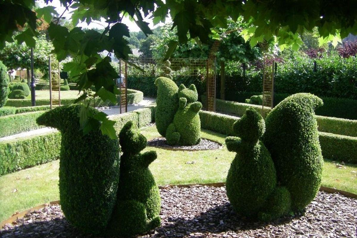 A Quelle Periode Tailler Les Lauriers tout savoir sur l'art topiaire et la sculpture végétale