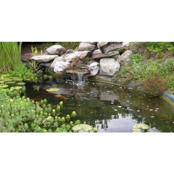 un bassin d 39 ornement pour votre jardin relaxant reposant et esth tique. Black Bedroom Furniture Sets. Home Design Ideas