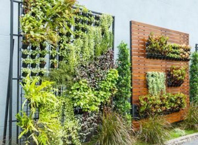 Un jardin vertical sur son balcon